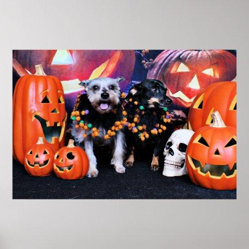 Halloween - Schnauzer Pansy - Chiweenie Nellie Posters