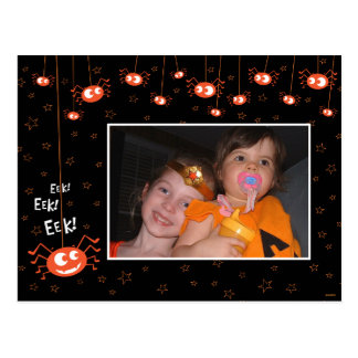 Halloween Spiders and Web Photo Postcard