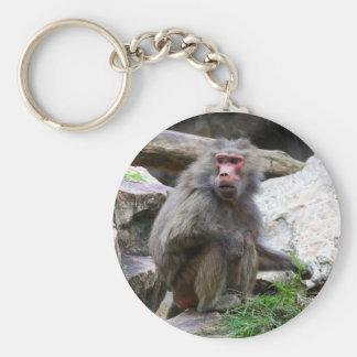 Hamadryas Baboon Basic Round Button Key Ring