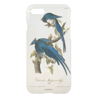HAMbWG 6/6s Clearly™ Deflector Case - Blue Jay