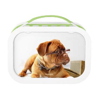 HAMbyWG Green yubo Lunch Box - Bulldog Customize