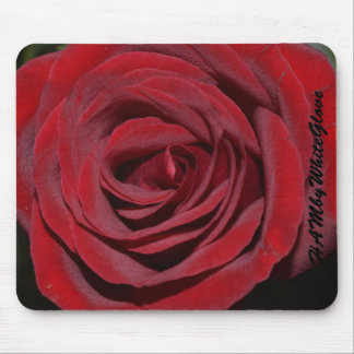 HAMbyWG Mouse Pads - Classic Red Rose