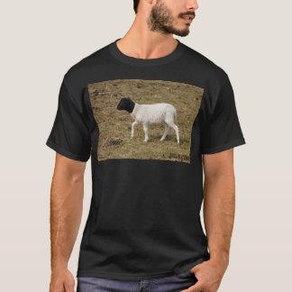 HAMbyWG - T-Shirt's - White & Black Sheep T-Shirt