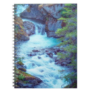 Hamma Hamma Creek Spiral Notebook