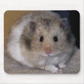 Hammie Mousemat