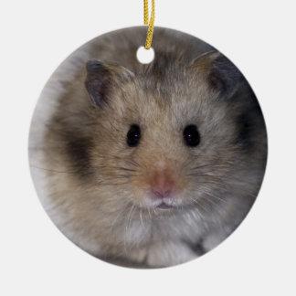 Hammie Ornament