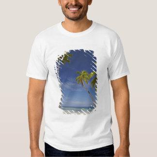 Hammock and palm trees, Plantation Island Resort T Shirts