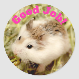Hammyville - Cute Hamster Good Job Classic Round Sticker