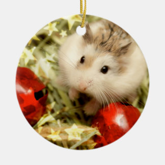 Hammyville - Cute Hamster Holiday Ceramic Ornament
