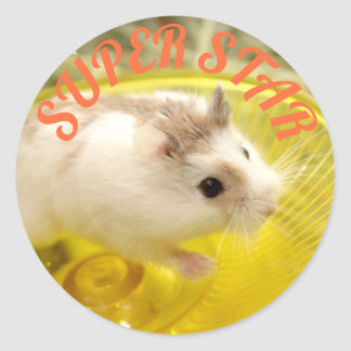 Hammyville - Cute Hamster Super Star Classic Round Sticker