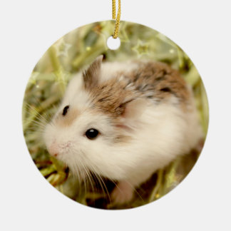 Hammyville - Cute Hamsters Ceramic Ornament
