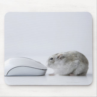 Hamster and Computer mouse Mouse Pad