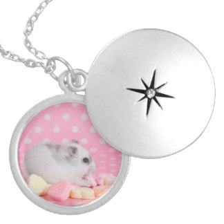 Hamster Candy Locket
