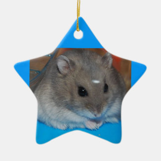 Hamster Ceramic Star Decoration