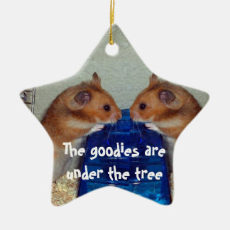 Hamster chat ceramic star decoration