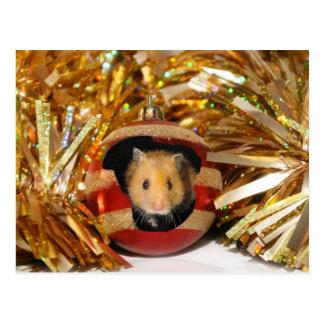 Hamster Christmas Postcard