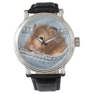 Hamster in blue jeans watch