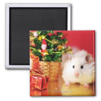 Hamster Kokolinka with Christmas tree Refrigerator Magnet