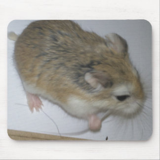 Hamster Mat Mouse Pad