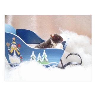 Hamster noah sledding postcard