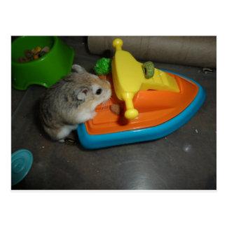 Hamster on a Jet-ski Postcard