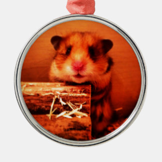 Hamster photo design Silver-Colored round decoration