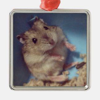 Hamster Silver-Colored Square Decoration