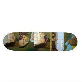 Hamster Skateboard