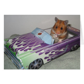 Hamster to go card