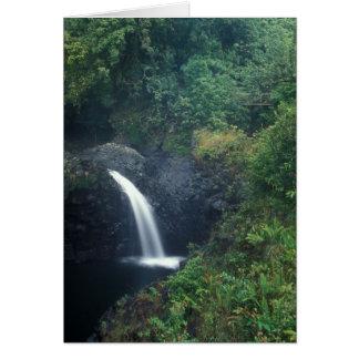 Hana Falls Pipiwai Trail Haleakala National Park Card