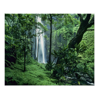 Hanakapiai Falls along the Na Pali Coast, Kauai, Poster