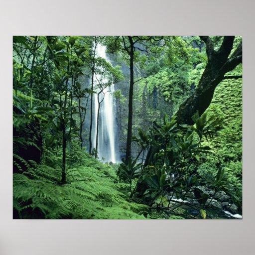 Hanakapiai Falls along the Na Pali Coast, Kauai, Posters