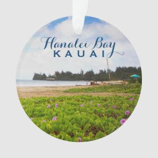 Hanalei Bay, Kauai Hawaii 2 Photo