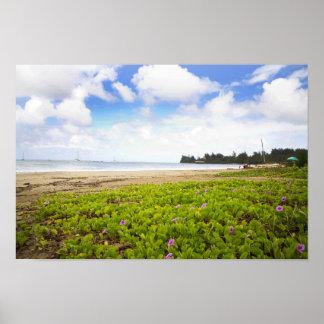 Hanalei Bay, Kauai Hawaii Beach Flowers Poster