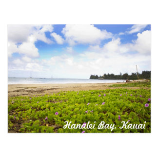 Hanalei Bay, Kauai Hawaii Tropical Beach Scene Postcard
