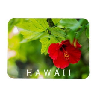 Hanalei Red Hibiscus Tropical Flower Magnet