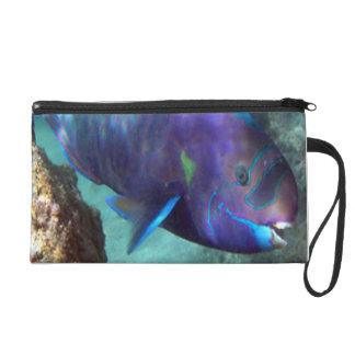 Hanauma Bay Hawaii Parrot Fish Wristlet
