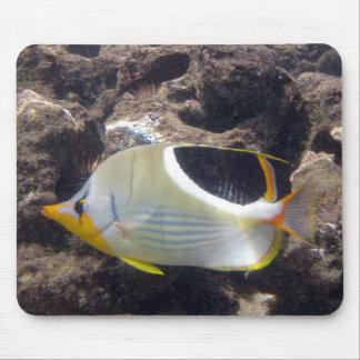 HANAUMA BAY HAWAII - Saddleback Butterfly Fish Mouse Pad