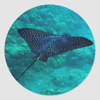 Hanauma Bay Hawaii Spotted Eagle Ray Classic Round Sticker