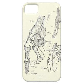 Hand Anatomy iPhone5 Case