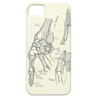 Hand Anatomy iPhone5 Case Barely There iPhone 5 Case