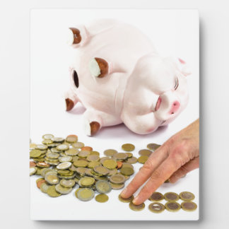 Hand counting euro coins from piggy bank plaque