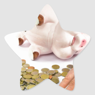 Hand counting euro coins from piggy bank star sticker