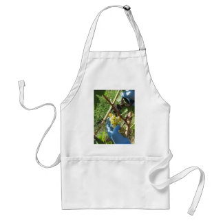 Hand cutting white grapes, harvest time standard apron