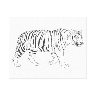Hand Drawn Tiger Drawing Poster Canvas Print