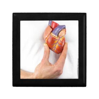 Hand holding model heart on chest gift box
