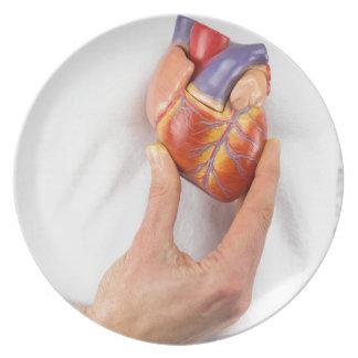 Hand holding model heart on chest plate