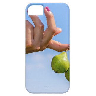 Hand holding two hanging green pears in blue sky iPhone 5 covers