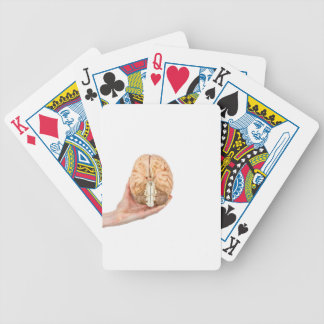 Hand holds model human brain on white background bicycle playing cards