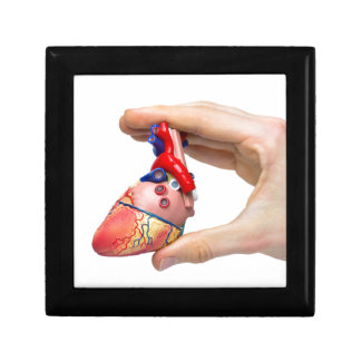 Hand holds model human heart between fingers gift box